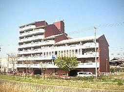 カーサフクシマA棟[4階]の外観