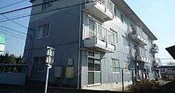 千葉県柏市豊町1丁目の賃貸マンションの外観