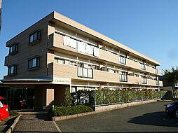 コモドヴィラ[3階]の外観
