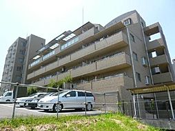デセンシア柏[6階]の外観