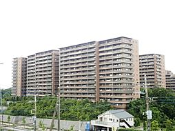 神奈川県川崎市麻生区万福寺3丁目の賃貸マンションの外観
