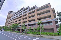 東京都葛飾区鎌倉3丁目の賃貸マンションの外観