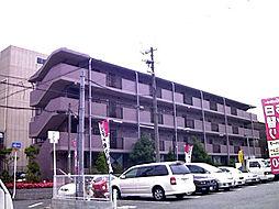 ベルデ堺東[310号室]の外観