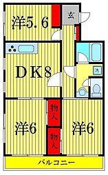 東京都葛飾区南水元4丁目の賃貸マンションの間取り