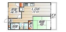 メゾン三田赤坂[3階]の間取り