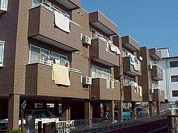 栃木県宇都宮市星が丘1丁目の賃貸マンションの外観