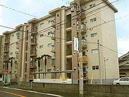 高石駅 3.7万円