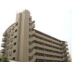 サングレース和泉[7階]の外観