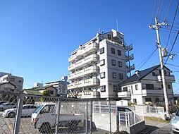 シャングリラ尾崎[401号室]の外観