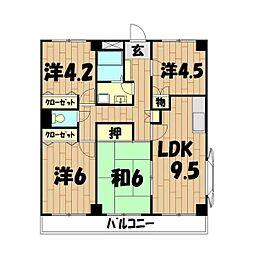 グランドゥール(市沢町58)[3階]の間取り