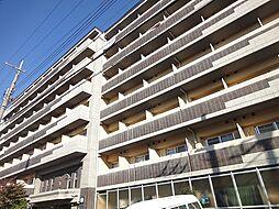 みつまめ京都[6階]の外観