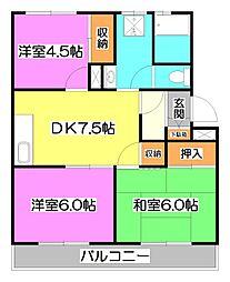埼玉県富士見市羽沢2丁目の賃貸マンションの間取り
