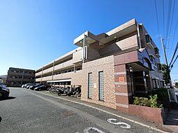 千葉県成田市並木町の賃貸マンションの外観
