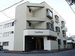 Lupinus[201号室]の外観