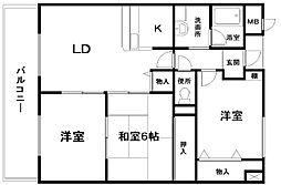 サンクレスト岸和田[703号室]の間取り