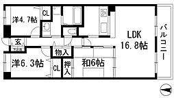 兵庫県西宮市上ケ原八番町の賃貸マンションの間取り