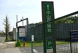都立小山田緑地北口(11m)