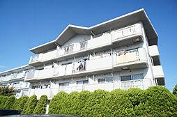 サンシャイン三苫[3階]の外観