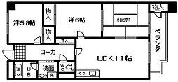 ドミール橘和泉橋本[303号室]の間取り