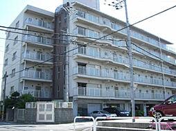 COM'S35[4階]の外観
