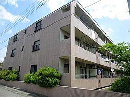 埼玉県新座市片山1の賃貸マンションの外観