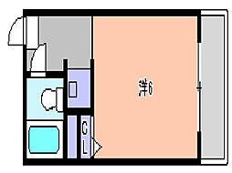 コーポグローリー[203号号室]の間取り