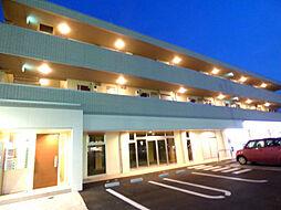 安行藤八D−room II[2階]の外観