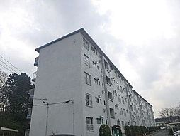 和泉町団地5号棟[5階]の外観