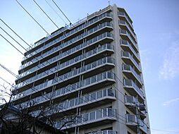 コスモ与野ステーションビュー[9階]の外観