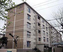 京都府八幡市男山弓岡の賃貸マンションの外観
