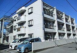 栃木県宇都宮市泉が丘6丁目の賃貸マンションの外観