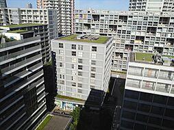 東京メトロ有楽町線 辰巳駅 徒歩9分の賃貸マンション