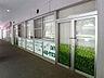 緑が丘エンゼルホーム310m徒歩4分,3LDK,面積82.95m2,価格2,160万円,東葉高速鉄道 八千代緑が丘駅 徒歩3分,,千葉県八千代市緑が丘西2丁目