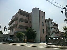 兵庫県伊丹市安堂寺町6丁目の賃貸マンションの外観