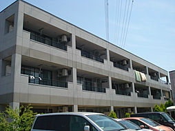 イズミガーデンヒルズ[3階]の外観