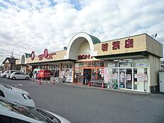 サンユーストアー 若葉店(1122m)