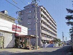 2439チサンマンション東中央 405[4階]の外観