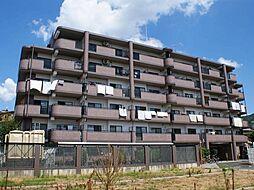 シャトーアルベール[2階]の外観