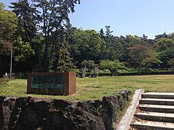 任坊山公園 徒歩 約7分(約550m)