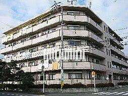 ハイレジデンスL[5階]の外観