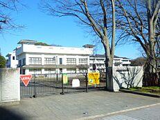 小学校水戸市立三の丸小学校まで1461m