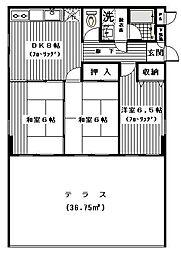 セザール第2綱島[502号室]の間取り