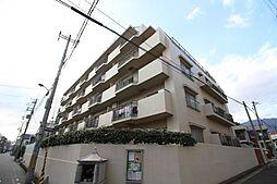 コスモハイツ六甲道[7階]の外観