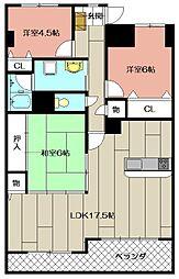 メゾンモンブラン永犬丸II505[5階]の間取り