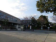 加古川中学校…約1300m