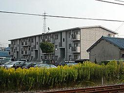 大阪府岸和田市下松町の賃貸マンションの外観
