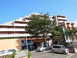 クエスタ デル ラモス2[7階]の外観