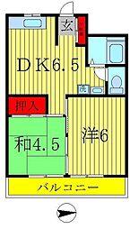 千葉県松戸市二ツ木の賃貸マンションの間取り
