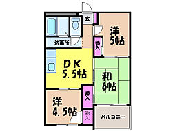 愛媛県松山市越智3丁目の賃貸マンションの間取り