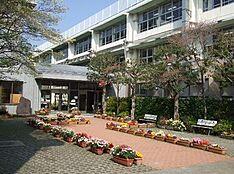 中学校奥沢中学校まで907m